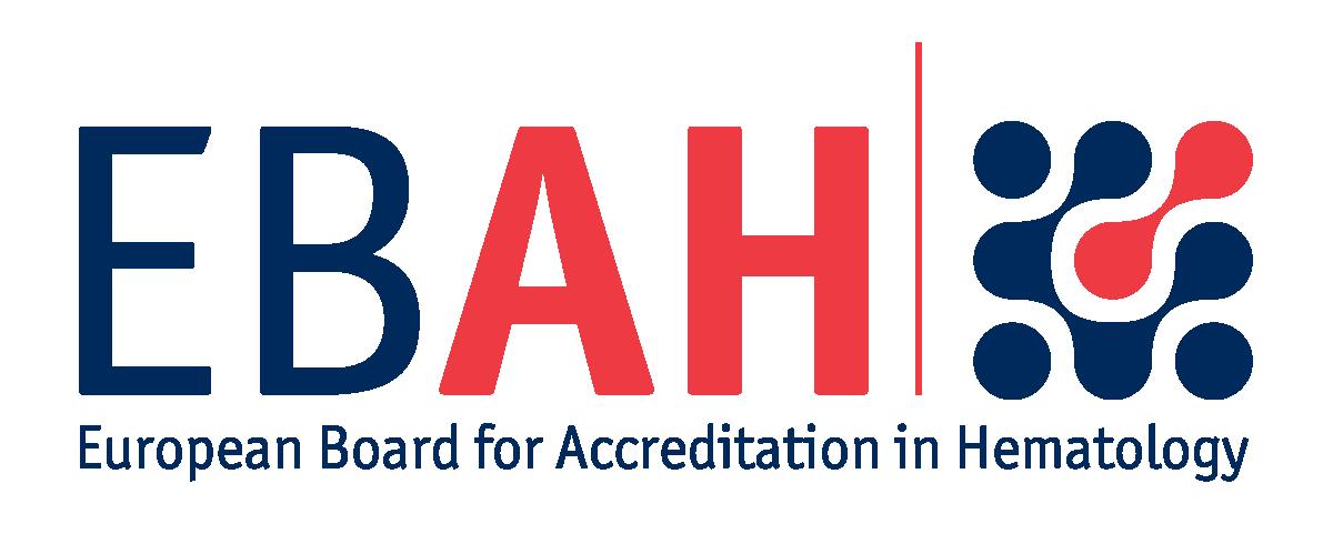 EBAH Logo